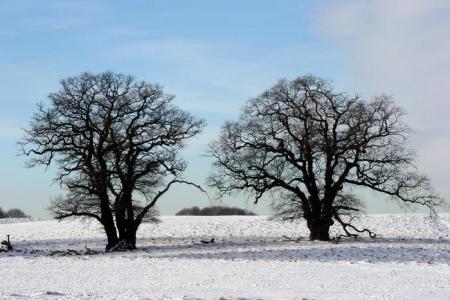 invierno-dinamarca.jpg